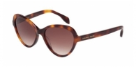 Alexander Mcqueen AM0029S 002 HAVANA / BROWN