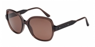 Bottega Veneta BV0015S 003 BROWN / BROWN