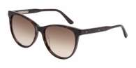 Bottega Veneta BV0021S 005 DARK HAVANA / BROWN GRADIENT