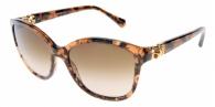 Dolce & Gabbana DG4162P 255013