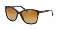 Dolce & Gabbana DG4170P 502/T5