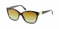 Dolce & Gabbana DG4195 502/T5
