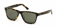 Web Eyewear WE0161 52N